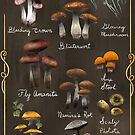 Skyrim Mycology Chart by moon-eyes