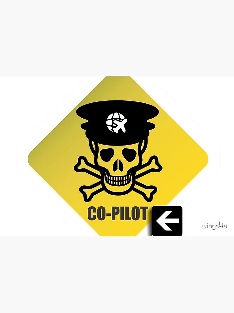 Model 23 - Warning Co-Pilot by wings4u