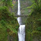 """""""Multnomah Falls"""" by Lynn Bawden"""