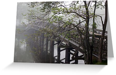 The Foot Bridge Fog in Spring Lake by Michele Ford