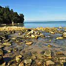 Rocks on a beach. by pickyspics