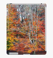 Autumn Beeches iPad Case/Skin