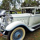 1930's Packard Roadster - White with Blue Trim by Marilyn Harris