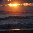 Sunset by Olga Zvereva