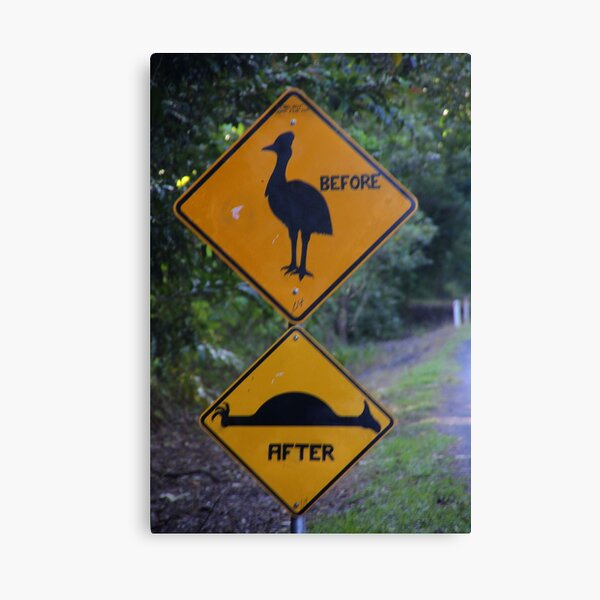 Be Aware of Cassowary! Canvas Print