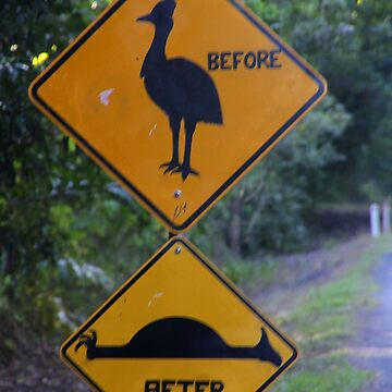 Be Aware of Cassowary! by amb1946