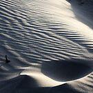 Flowing sand by Marcel van Ommeren