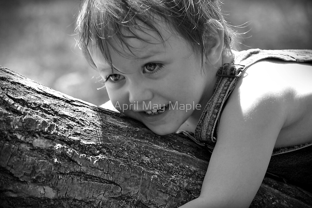 Have you hugged a tree today? by April May Maple