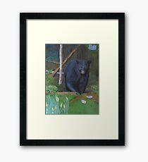 Backyard Marauder Framed Print