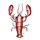 Lobster in watercolor and ink by maarta