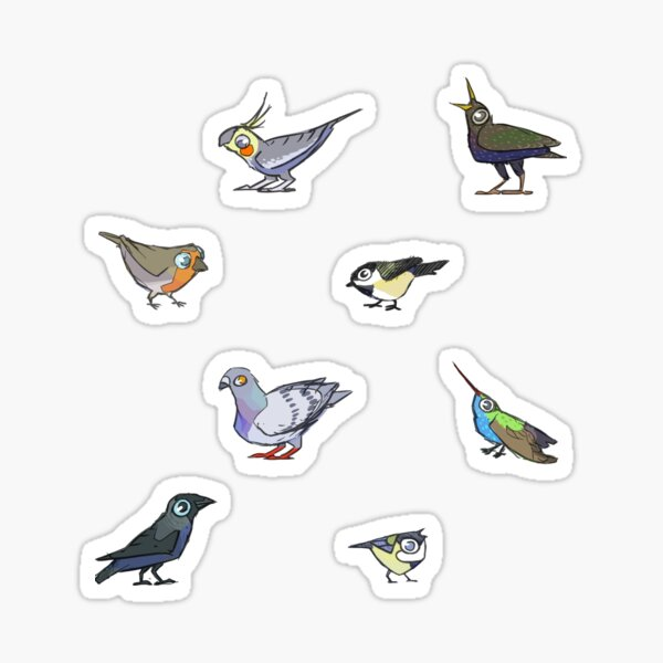 Birds birds birds. Sticker