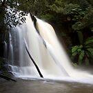 Lower Lilydale Falls by Patrick Reid