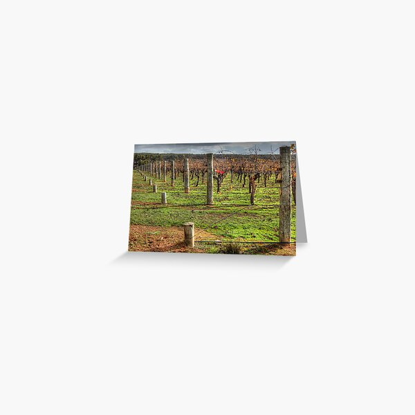 A Frankland Vineyard Greeting Card