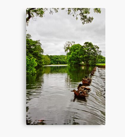 The Weir at Whalley Canvas Print