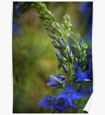 Grunge Blue Flowers #2 Poster