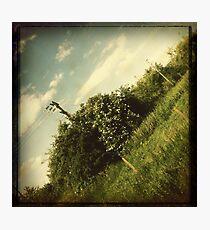Journey Home #2 Photographic Print