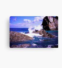 Devon rocky coast Canvas Print