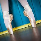 Ballet Shoes by Katherine Williams