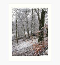 Snow on autumn leaves Art Print