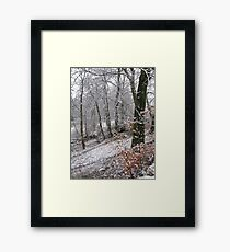 Snow on autumn leaves Framed Print