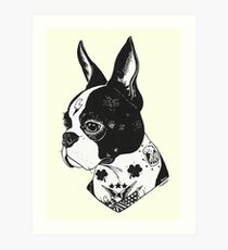 Tattooed Boston Terrier  Art Print