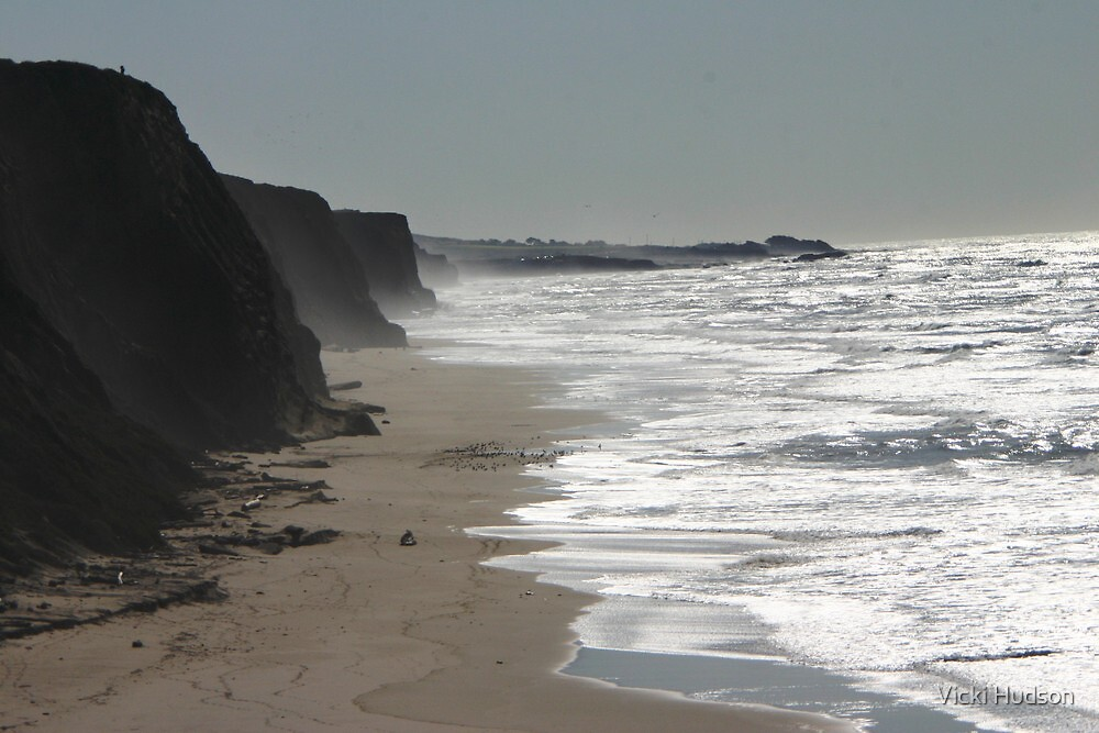 SF Bay Area Coast Line by Vicki Hudson