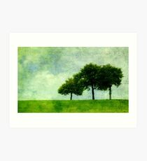 Three Trees in Summer Art Print