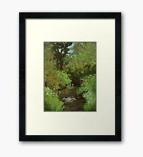 Creek at North Bank Habitat Mgmt Framed Print