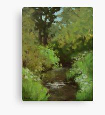 Creek at North Bank Habitat Mgmt Canvas Print
