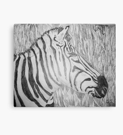 Zebra in the grass Canvas Print