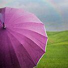 And finally a rainbow will come by M a r t a P h o t o g r a p h y