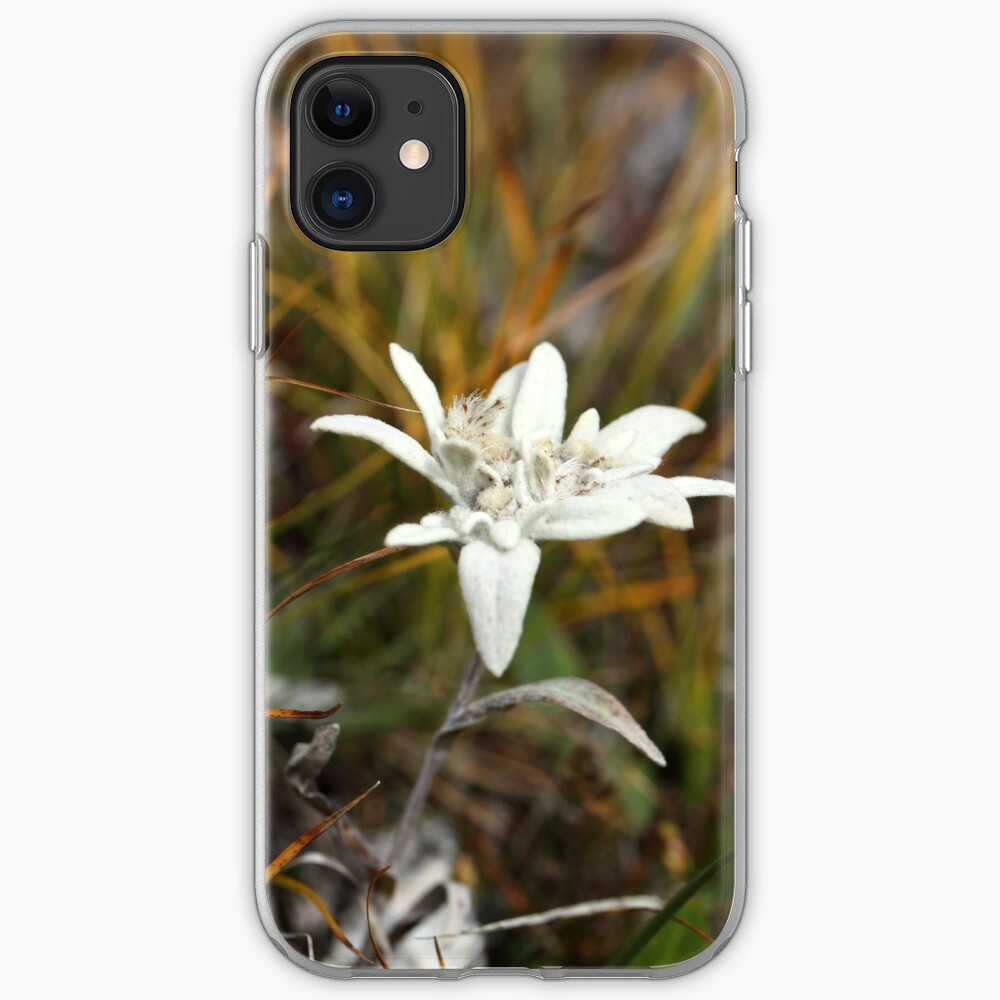 Alpine Edelweiss iPhone Case & Cover