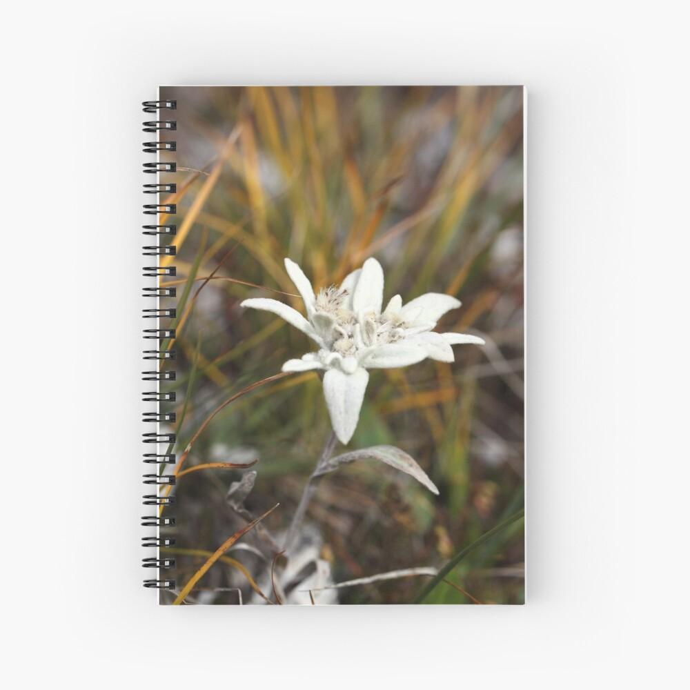 Alpine Edelweiss Spiral Notebook