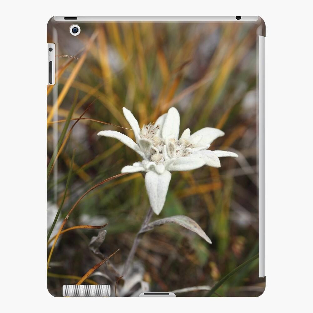 Alpine Edelweiss iPad Case & Skin