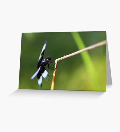 Lensbaby Dragonfly Greeting Card