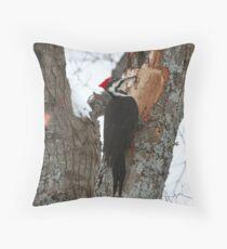 Piliated Woodpecker, Muskoka Throw Pillow