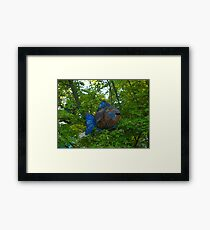 """""""When fish fly"""" Framed Print"""