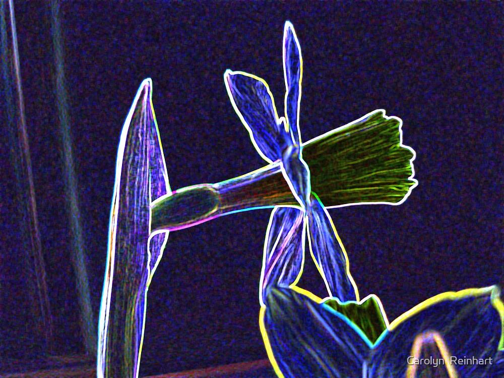 Artistic Daffodil by Carolyn  Reinhart