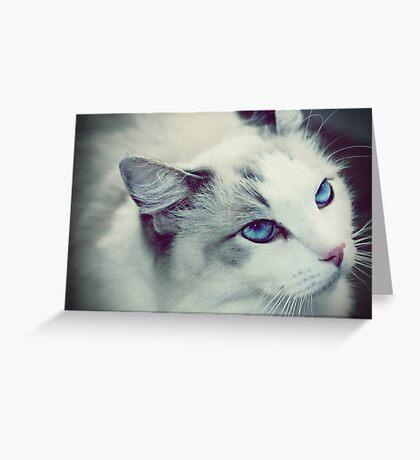 Ol Blue Eyes Greeting Card