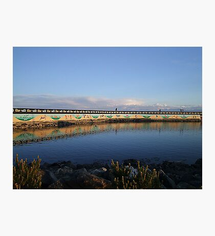 Land And Sea Mural Photographic Print