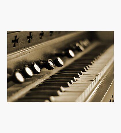 Keys of Ivory - Sepia Photographic Print