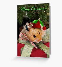 Christmas Elf Hamster Greeting Card