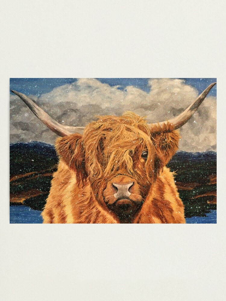 Alternate view of Highland Cow in Early Snow - Wall Art Photographic Print