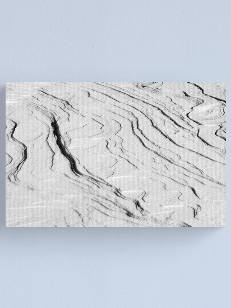 Alternate view of Windswept Snow Canvas Print