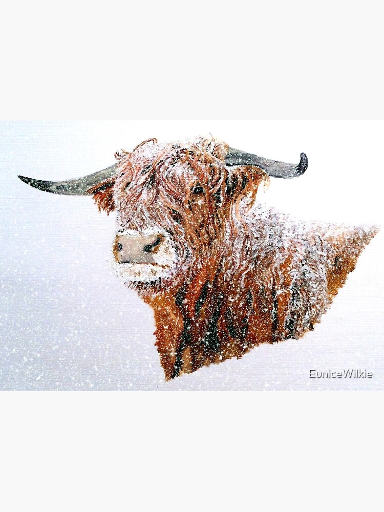 Snowy Highland Cow in Falling Snow - Wall Art by EuniceWilkie