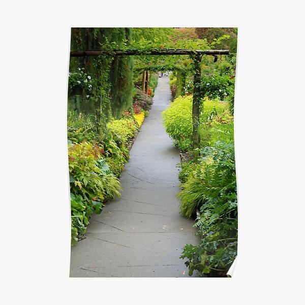 Garden of 1000 Dreams Poster