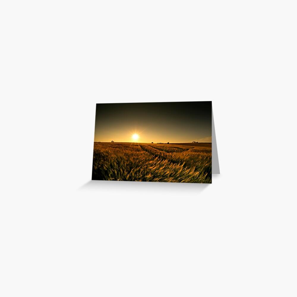 Sunny crop Greeting Card