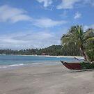 Beach by WaltaA