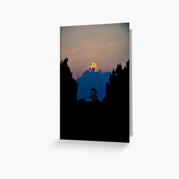 Tall tree silhouetted against huge cloud aflame with light from the setting sun. Greeting Card