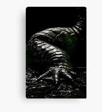 The Dark Side:  Alligator Armor Canvas Print